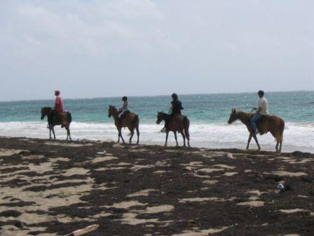 Randonnée Equestre Plage Grand Macabou